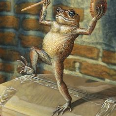 'Dancing 'Poor Man' Toad, acrylic painting' by CaraBevan Frog Illustration, Frog Drawing, Dancing Drawings, Frog Pictures, Funny Frogs, Frog Art, Toddler Art, Frog And Toad, Whimsical Art