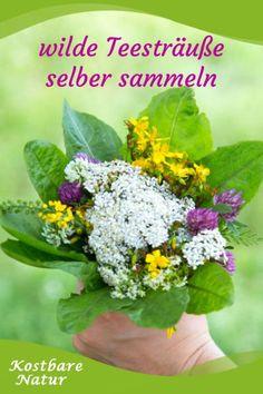 Aus vielen Wildblumen und -kräutern lassen sich köstliche Tees zubereiten. Einfach kostenlos sammeln und einen originellen Teestrauß verschenken.