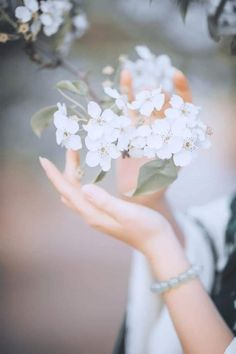 Dreamy Photography, Hand Photography, Girl Photography Poses, Flower Background Wallpaper, Flower Backgrounds, Nature Wallpaper, Cute Profile Pictures, Girly Pictures, Love Flowers