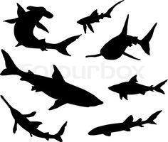 Stock vector ✓ 14 M images ✓ High quality images for web & print | Sharks silhouettes