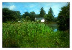 Connemara, Explore, Mountains, Green, Nature, Travel, Naturaleza, Viajes, Exploring