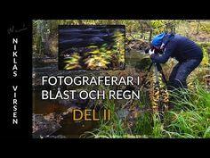 FOTOGRAFERAR I BLÅST CH REGN - DEL II med Niklas Virsen