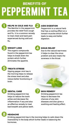 Peppermint is an herbal tea which is infused with peppermint and is sometimes made out of mint tea. Here we list some important benefits of peppermint tea. Cucumber Benefits, Coconut Health Benefits, Health Benefits Of Tea, Best Teas For Health, Weight Loss Tea, Salud Natural, Natural Herbs, Natural Health, Peppermint Tea Benefits