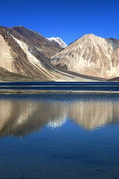 Pangong Tso  Tibetan Himalayas situated at a height of about ...