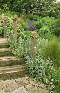 Sleeper Steps planted with varied and interesting textures. Great, inviting path through abundant gardens