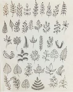 293 Best Plant Drawing images in 2019 | Doodles, Needlepoint, Paintings