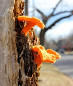Knitted Jack O Lantern Fungus by Leigh Martin aka @bromeleighad