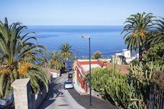 En biltur rundt Tenerife tar deg til smale fjellveier med gispende utsikt og motorveier med 120 kilometers fartsgrense. Og ikke minst, til fargerike småbyer langt unna masseturismen. Machu Picchu, Tenerife, Explore, Places, Santa Cruz, Teneriffe, Lugares, Exploring