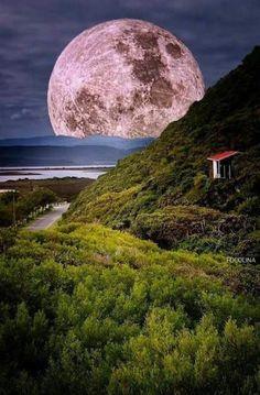 Amo a lua...