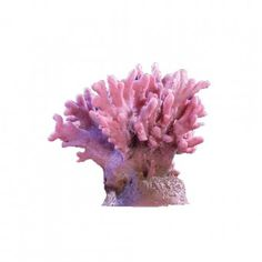 California Coral – Small #509 $30.56 SHOP NOW at LivingColor.com Available in Brown, Light Blue, and Dark Pink.. Dimensions: 5″ x 5″ x 5″