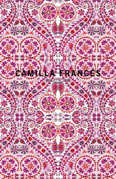 pink persian (Camilla Frances Prints)