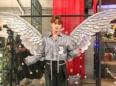 Kim Mingyu you are my angel. Woozi, Wonwoo, Jeonghan, The8, Seungkwan, Vernon, K Pop, Hip Hop, Kim Min Gyu