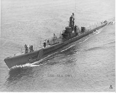 USS Sea Owl (SS-405) Balao-class US Navy submarine. (wikipedia.image) 5.17