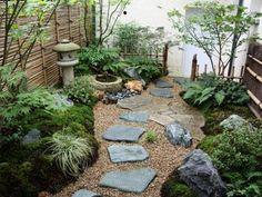 le jardin japonais dans ses premiers mois