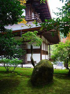 銀閣寺 | Ginkaku-ji Temple ACL: I used to live within walking distance and studied ikebana here taught by the wife of the priest.
