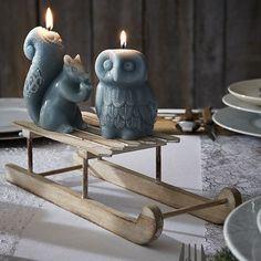 Bougies animaux #zodio #Noël