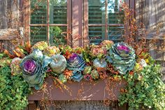 Plan ahead for plantings that will transition through the holidays with a few additions. Start with ornamental cabbage, bittersweet, pumpkins, dried hydrangeas, arti