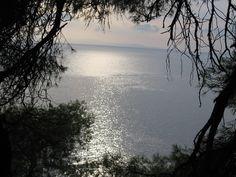 Photos of Skopelos by Greeka members – Greeka.com - Page 5