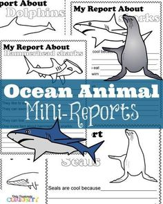 Ocean Animal Mini-Reports - Printable one page reports for kids about dolphins, sharks and other ocean animals.