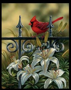Cardinal Art by R. Millette--wildwings.