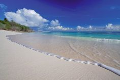 Bird Island, Seychelles | spiaggia Bird Island Seychelles 300x200 BIRD ISLAND, IL PARADISO DELLE ...