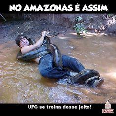 Anacondas Amazonas On Pinterest Anaconda Ufc And Fire