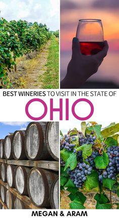 Columbus Travel, Columbus Ohio, Usa Travel Guide, Travel Usa, Geneva Ohio, Different Types Of Wine, Future Travel, Wine Country, Summer Fun