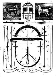 """Complément à l'article """"Le régulateur du sellier"""". Horse Harness, Horse Gear, Horse Drawn, Floor Plans, Diagram, Horses, Black And White, Pony, Art"""