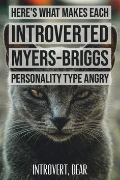 While introverts aren't always quick to show their anger on the outside, we can still get hopping mad if someone pushes our buttons. Here's what gets each introverted Myers-Briggs personality type angry. Myers Briggs Personalities, Myers Briggs Personality Types, 16 Personalities, Infj Infp, Istj, Introvert Personality, Personality Psychology, Psychology Quotes, Introvert Problems