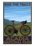 acadia national park, maine   bicycle scene poster