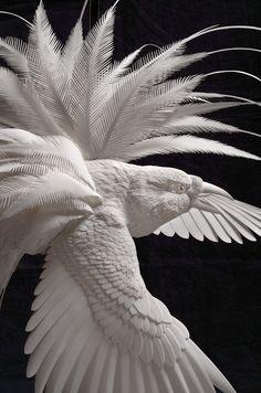 cut paper white greater bird of paradise on high contrast background http://calvinnicholls.com/