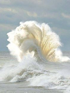 waves, nature, and ocean image No Wave, Beautiful World, Beautiful Places, Beautiful Pictures, Beautiful Beach, All Nature, Amazing Nature, Jolie Photo, Ocean Waves