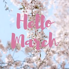 😍Hello March😍 - created @PixTeller https://pixteller.com/designs/instagram-square/hello-march-id206980?utm_content=buffere95e0&utm_medium=social&utm_source=pinterest.com&utm_campaign=buffer