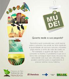 Dia Mundial do Meio Ambiente on Behance