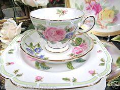Royal Albert Tea Cup and Saucer Trio Botanical Teas Roses Pattern
