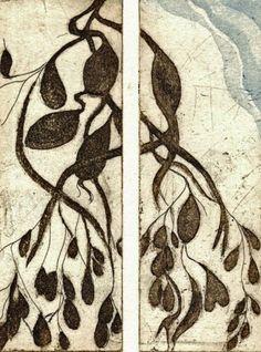 Seaweed by Rona MacLean - etching