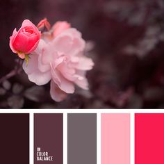 The refined palette, in which all colors are chosen with great taste. The dark tones of brown, the color of rotten cherries, gray start to play in a special way on a light and bright colors. Ash Pink brings a touch of tenderness and romanticism. Juicy red plays a leading role in this scheme. He, on the contrary, declares displays of affection and stormy temperament. These colors are ideal for creating an evening wardrobe to go out, for example, visiting exhibitions, theater, concerts.
