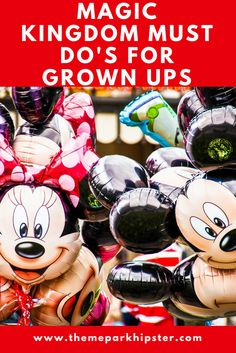 What are the best attractions at the Magic Kingdom for adults?