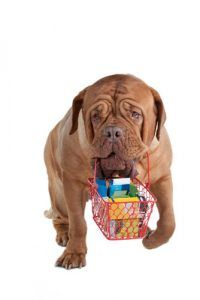 Loyalty schemes for dog supplies retailers