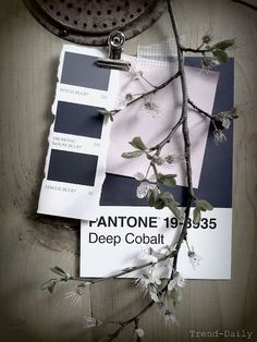 color pantone grey blue Oh So Lovely Obsessions Colour Schemes, Color Trends, Colour Palettes, Blue Drawings, Material Board, Object Photography, Design Seeds, Design Blog, Colour Board
