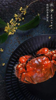 Crab Recipes, Asian Recipes, Healthy Recipes, Food Poster Design, Food Design, Seafood Buffet, Creative Food, Food Plating, No Cook Meals