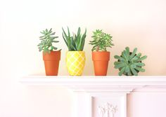 Color your basic #terracotta #pot in #yellow and draw white lines for the #pineapple look. #decor #trend
