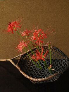 Ikebana by Atsushi, Japan Spider lilies imagined in motion.
