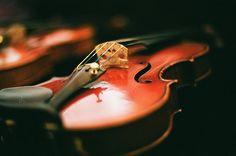 Violin by mybigbro, via Flickr