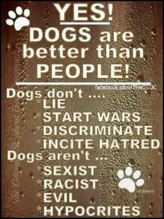 Dogs ARE better than people!