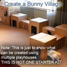 Cats Toys Ideas - Hopper Hideway - Ideal toys for small cats Rabbit Cages, Bunny Cages, House Rabbit, Rabbit Toys, Bunny Rabbit, Hunny Bunny, Baby Bunnies, Diy Bunny Toys, Benny And Joon