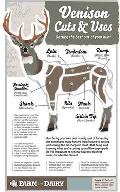 Responsible hunting, game management and wildlife conservation are important aspects of any wild game hunting, but many find the challenge of deer hunting to be the most challenging. Here are some ideas and deer hunting tips to make y Deer Recipes, Wild Game Recipes, Lamb Recipes, Survival Food, Survival Skills, Survival Weapons, Survival Kit, Tactical Survival, Bushcraft