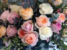 mixe  avalanche roses