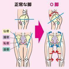 簡単に直す方法 | O脚治し方ガイド