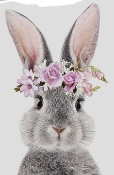 Bunny Art, Cute Bunny, Wallpaper Iphone Cute, Cute Wallpapers, Rabbit Art, Hippie Art, Cute Animal Drawings, Watercolor Animals, Cute Illustration